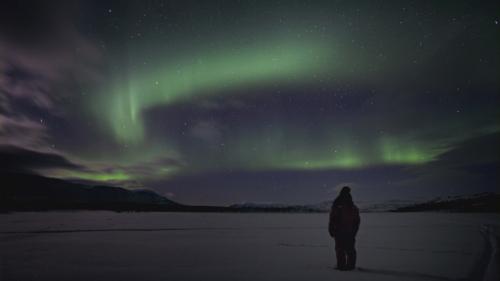 Joanna Lumley Northern Lights Dvd